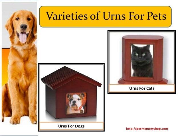 Varieties of Urns for Pets Slide 2