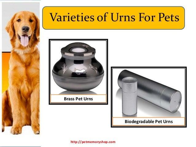 Varieties of Urns for Pets Slide 3