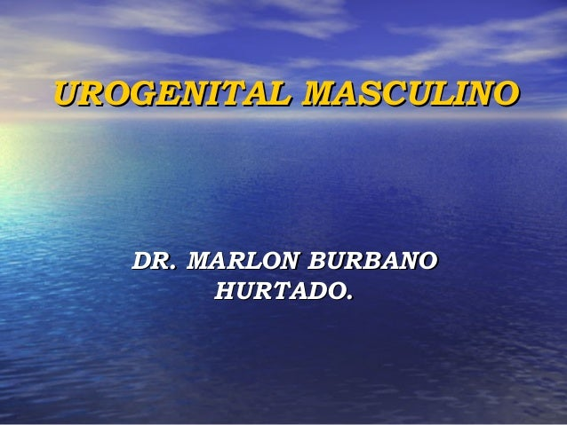 DR. MARLON BURBANODR. MARLON BURBANO HURTADO.HURTADO. UROGENITALUROGENITAL MASCULINOMASCULINO