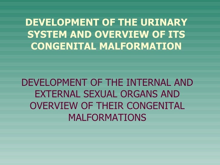 DEVELOPMENT OF THE URINARYSYSTEM AND OVERVIEW OF ITS CONGENITAL MALFORMATIONDEVELOPMENT OF THE INTERNAL AND  EXTERNAL SEXU...