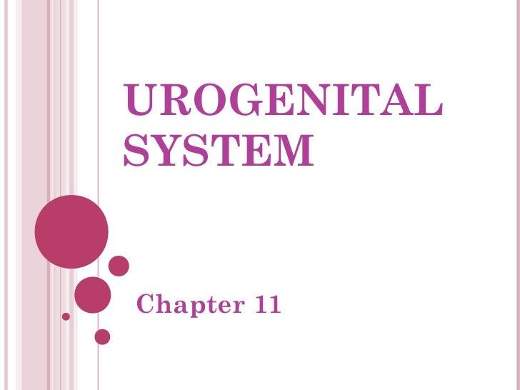 UROGENITALSYSTEMChapter 11