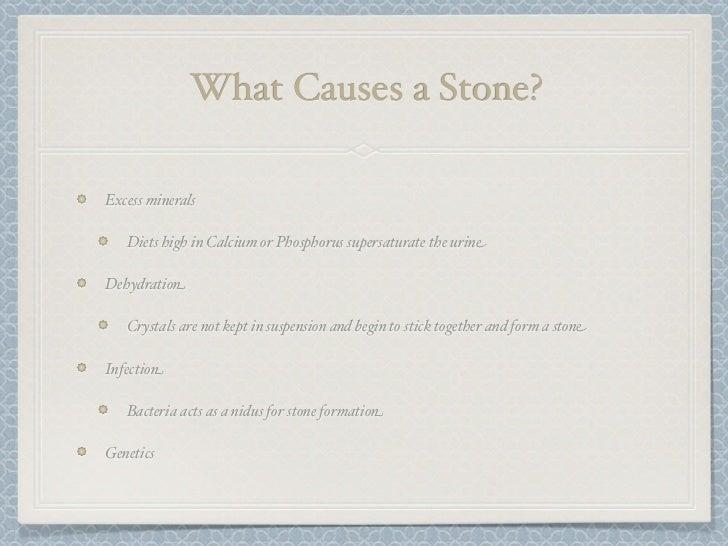 case study urolithiasis answers