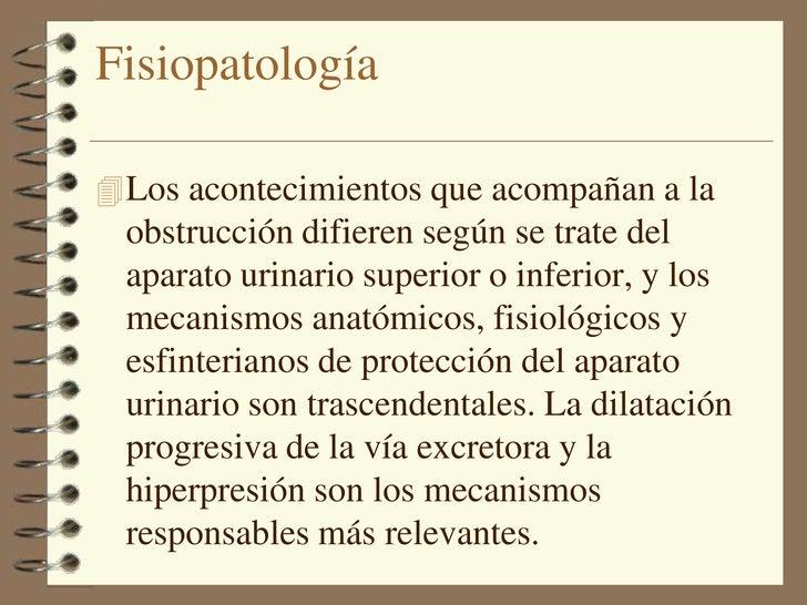 Uropatia obstructiva pdf fisiopatologia