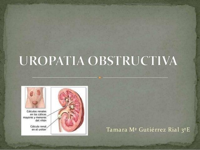 Tamara Mª Gutiérrez Rial 3ºE