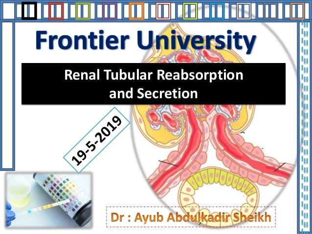 Renal Tubular Reabsorption and Secretion