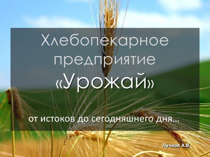 Хлебопекарное    предприятие      «Урожай»  от истоков до сегодняшнего дня…                             Пучков А.В