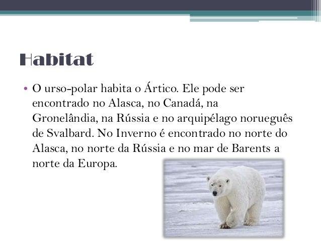 Resultado de imagem para ameaças ao urso polar