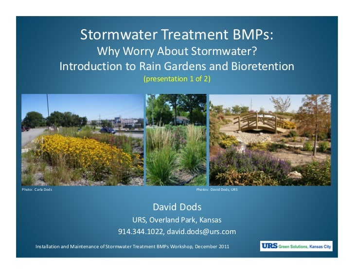 Stormwater Treatment BMPs:                           Why Worry About Stormwater?                    Introduction to Rain G...