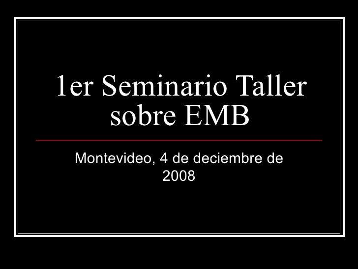 1er Seminario Taller sobre EMB Montevideo, 4 de deciembre de 2008