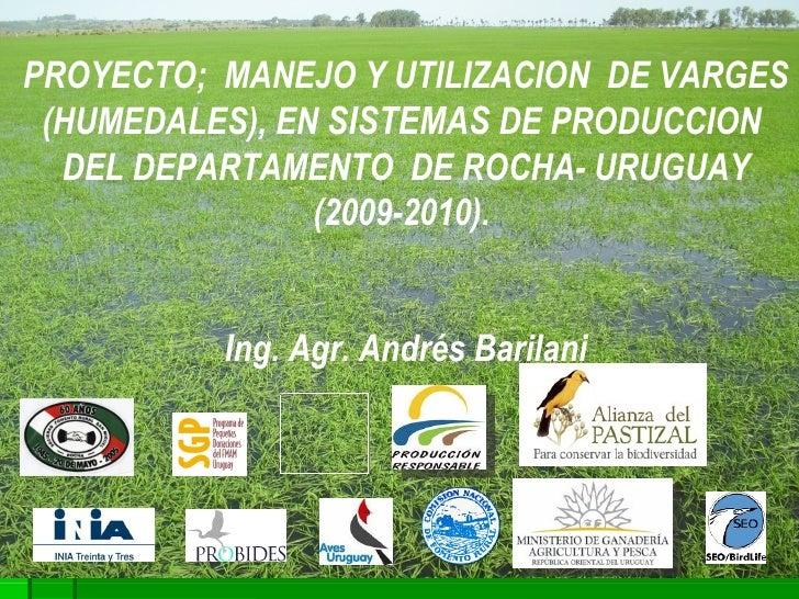 PROYECTO;  MANEJO Y UTILIZACION  DE VARGES (HUMEDALES), EN  SISTEMAS  DE PRODUCCION  DEL DEPARTAMENTO  DE ROCHA- URUGUAY (...
