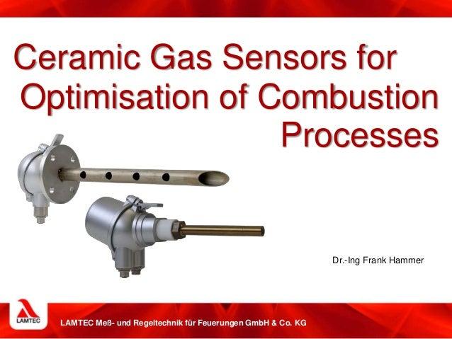 LAMTEC Meß- und Regeltechnik für Feuerungen GmbH & Co. KG Ceramic Gas Sensors for Optimisation of Combustion Processes Dr....