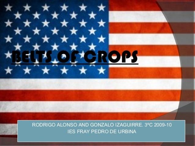 BELTS OF CROPS  RODRIGO   ALONSO AND GONZALO IZAGUIRRE. 3ºC 2009-10                IES FRAY PEDRO DE URBINA