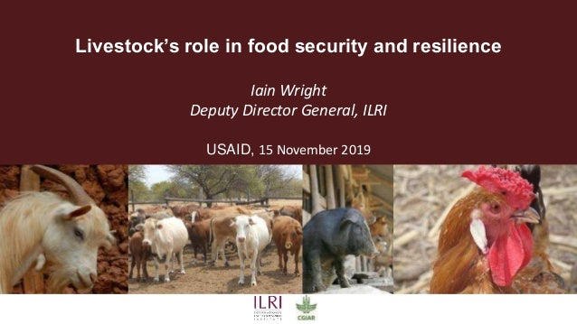 Livestock's role in food security and resilience Iain Wright Deputy Director General, ILRI USAID, 15 November 2019