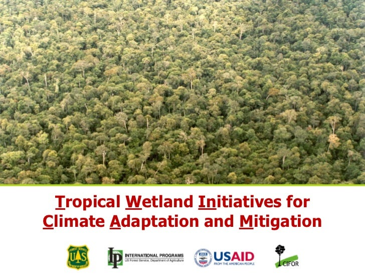 Tropical Wetland Initiatives for        Climate Adaptation and MitigationTHINKING beyond the canopy