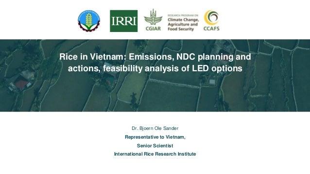 Dr. Bjoern Ole Sander Representative to Vietnam, Senior Scientist International Rice Research Institute Rice in Vietnam: E...
