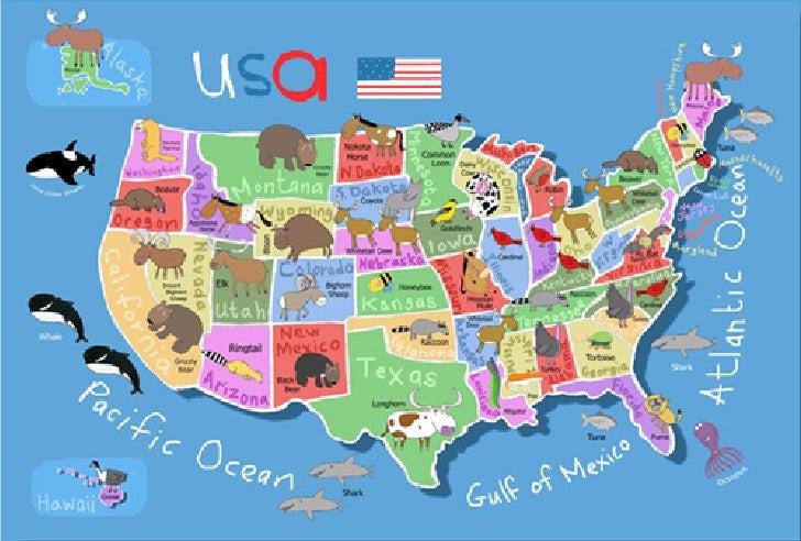 US Kids Wall Map