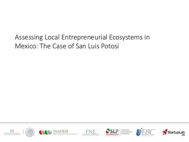 Assessing Local Entrepreneurial Ecosystems in Mexico: The Case of San Luis Potosí