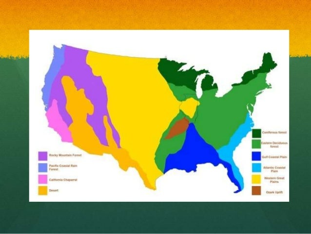 Map Of Us Biomes Map The Southwest General Map Of The Southwestern - Biomes map of the us