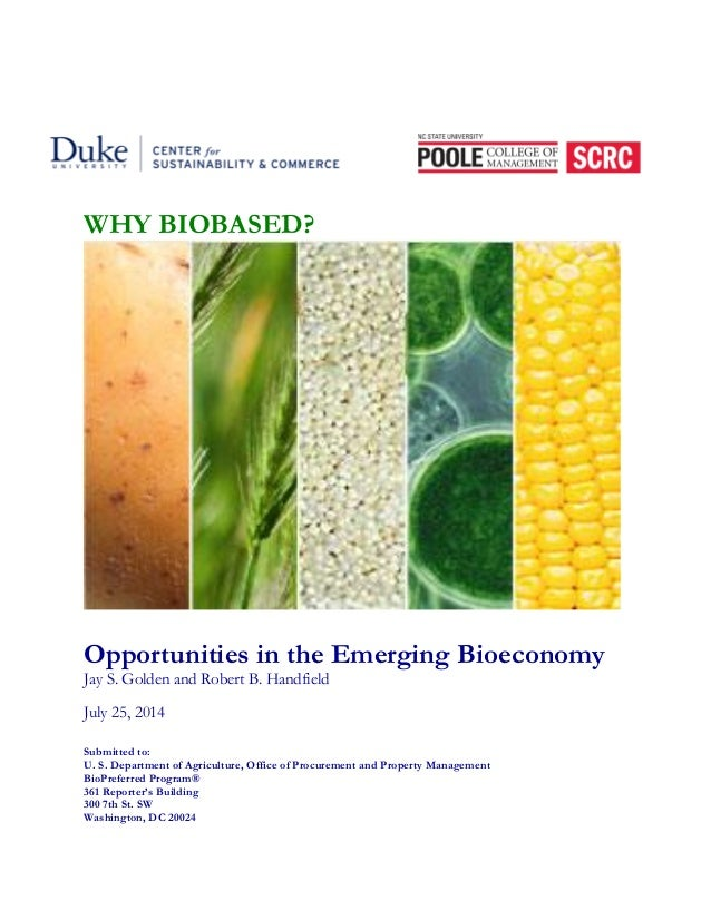 WHY BIOBASED?  Opportunities in the Emerging Bioeconomy  Jay S. Golden and Robert B. Handfield  July 25, 2014  Submitted t...