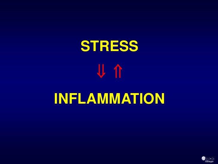 STRESS       INFLAMMATION                   ©Bieger