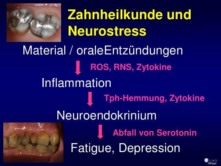 Zahnheilkunde und        Neurostress Material / oraleEntzündungen            ROS, RNS, Zytokine    Inflammation           ...