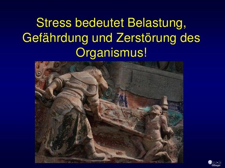 Stress bedeutet Belastung, Gefährdung und Zerstörung des          Organismus!                                     ©Bieger