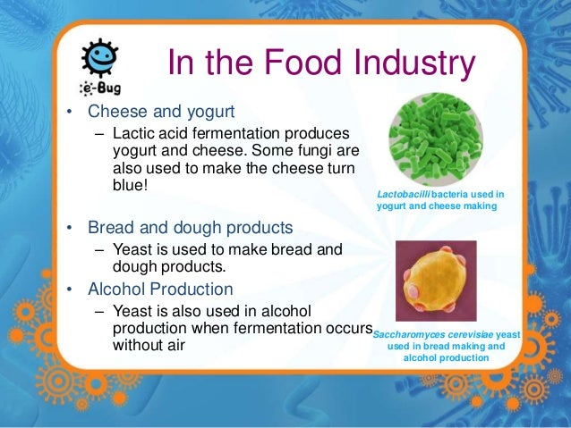 Foods For Good Microbes