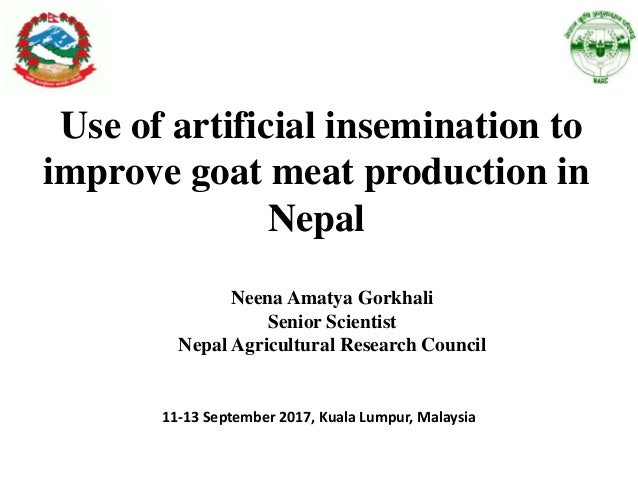 Use of artcificial insemination to improve goat meat