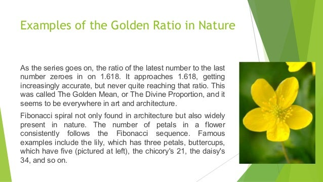 Golden Section Architecture use of golden ratio in architecture