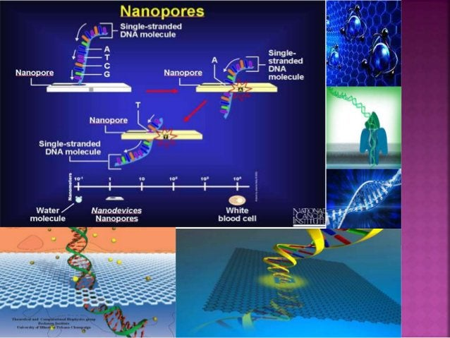  NANOTUBE  Another nanodevice that will help identify DNA changes associated with cancer is the nanotube.  Nanotubes ar...