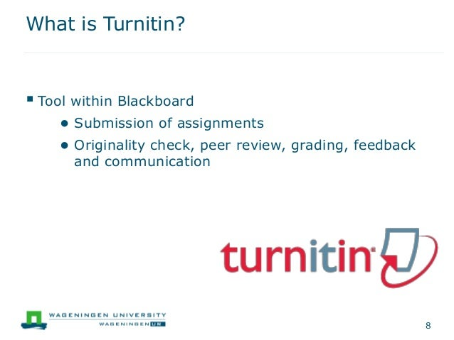 what is turnitin