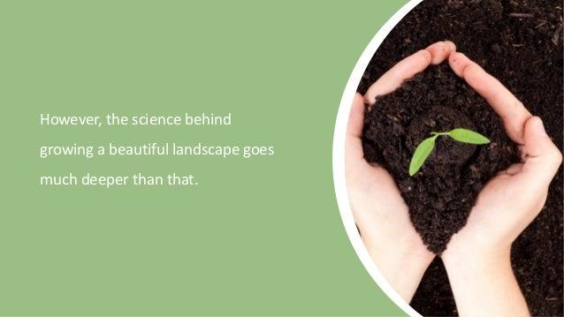 Use Plant Hormones for a More Beautiful Landscape Slide 3