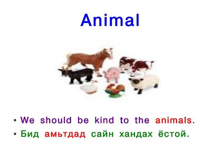 Animal●   We should be kind to the animals.●   Бид амьтдад сайн хандах ёстой.