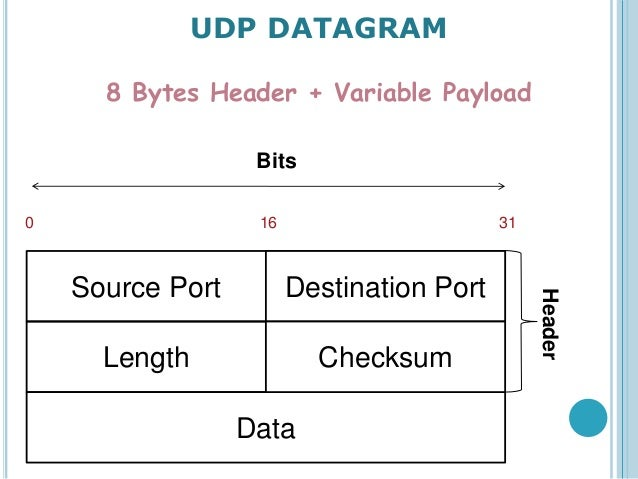 user datagram The user datagram protocol of course, tcp isn't the only user protocol in tcp/ ip networking although suitable for applications like rlogin, the overhead.