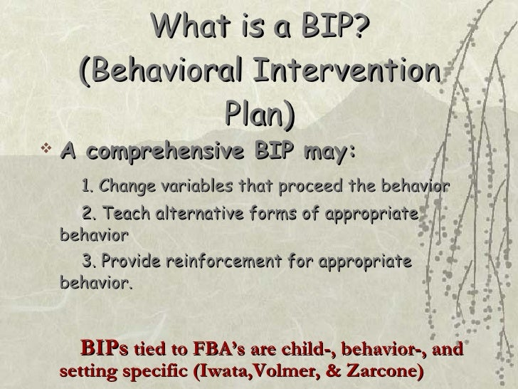 ... 8. What Is A BIP? (Behavioral Intervention Plan) ...