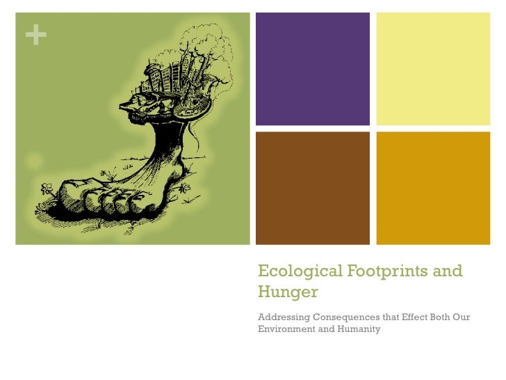Ecological Footprints and Hunger Addressing Consequences that Effect Both Our Environment and Humanity