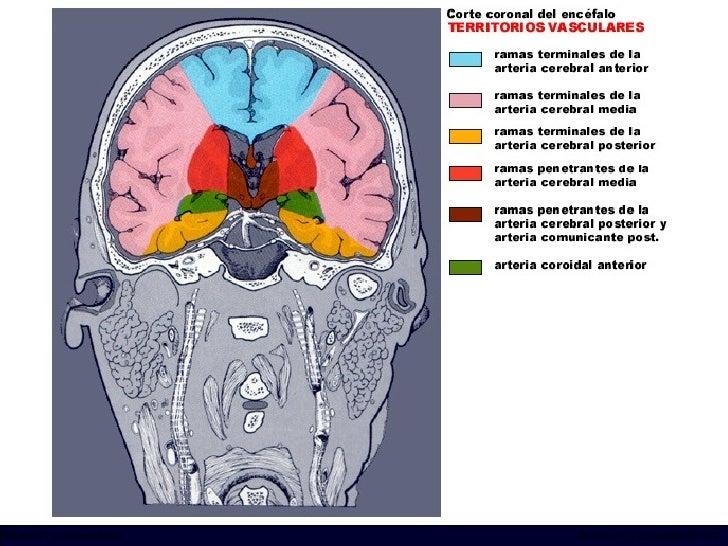 INCICh/CT Scanner del Sur División TC y US/Unidad PET-CT