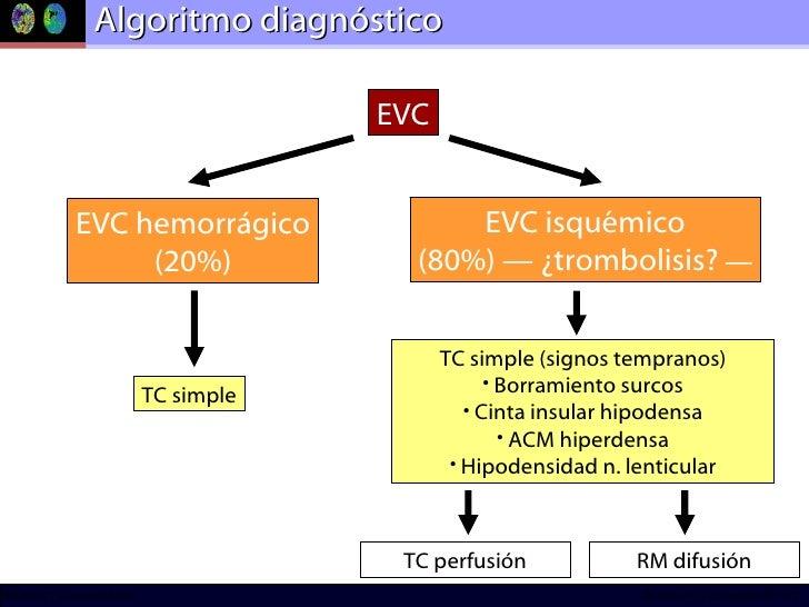 Algoritmo diagnóstico EVC hemorrágico (20%) TC simple EVC EVC isquémico (80%) — ¿trombolisis?  — <ul><li>TC simple (signos...