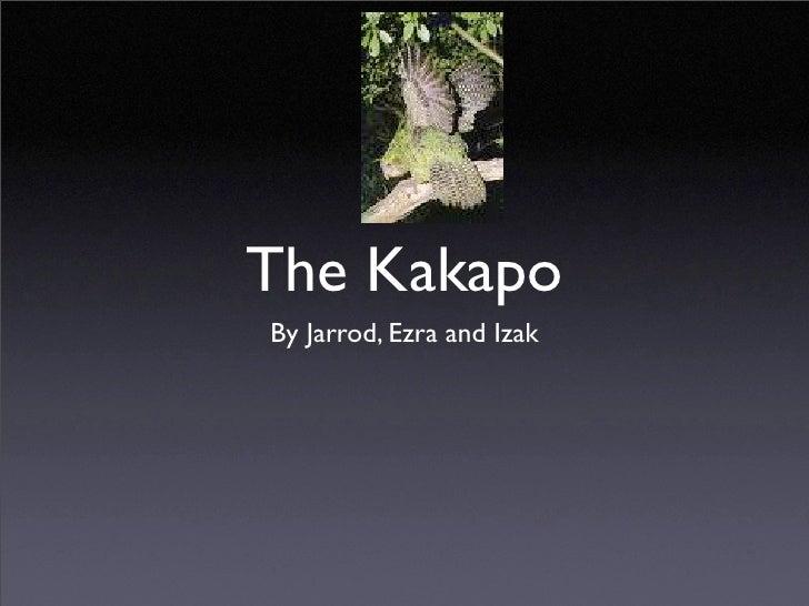 Kakapo slideshow by Izak and Ezra
