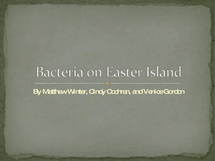By Matthew Winter, Cindy Cochran, and Venice Gordon
