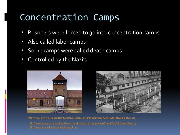 an overview of the auschwitz nazi concentration camp Arrival of political prisoners at the oranienburg concentration camp  neither  order was subject to judicial review, or any review by any german agency  outside.