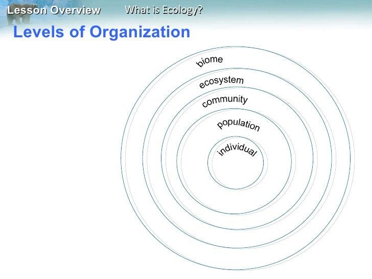 Levels of Organization ...