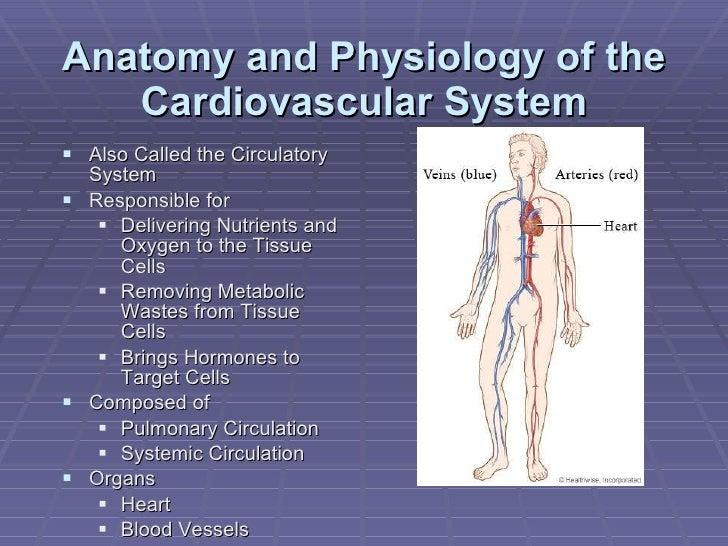 Presentation #3 for Medical Terminology