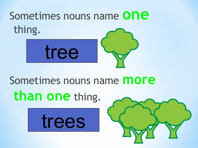 This week we are working on being able to find the nouns in sentences. Let's practice this.