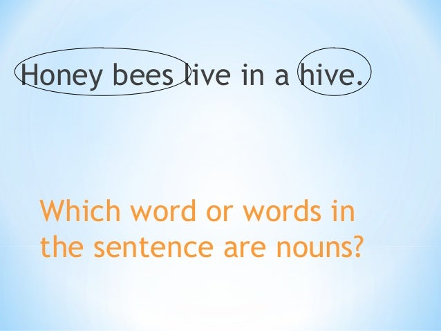 Squirrels like to eat nuts.  Which word or words in the sentence are nouns?