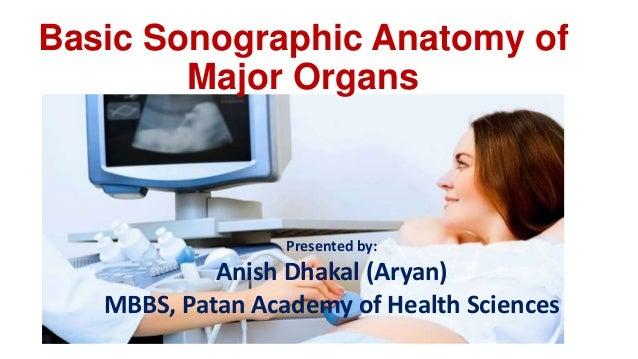 Ultrasound Normal Anatomy of Major Organs