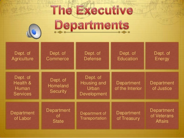 the president's cabinet-us government chpt 6