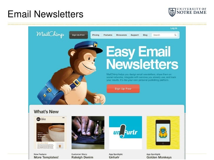 Email Newsletters<br />