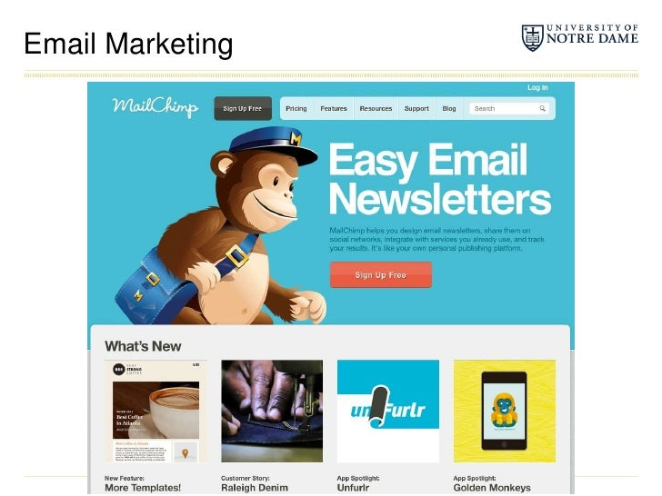 Email Marketing<br />