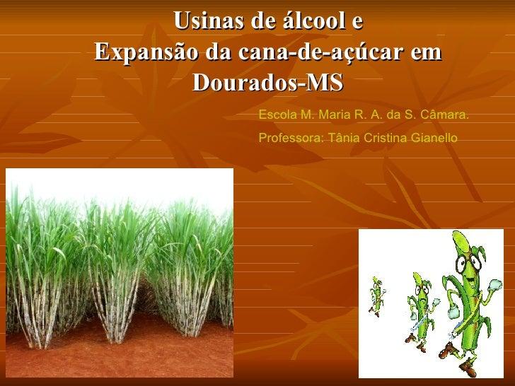 Usinas de álcool e Expansão da cana-de-açúcar em Dourados-MS Escola M. Maria R. A. da S. Câmara. Professora: Tânia Cristin...